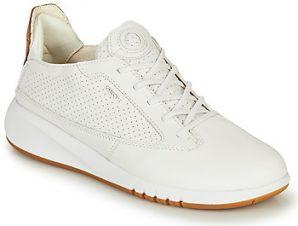 Xαμηλά Sneakers Geox D AERANTIS ΣΤΕΛΕΧΟΣ: Συνθετικό και ύφασμα & ΕΠΕΝΔΥΣΗ: Δέρμα & ΕΣ. ΣΟΛΑ: Δέρμα & ΕΞ. ΣΟΛΑ: Καουτσούκ